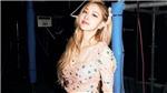 Rosé Blackpink lộ hàng loạt bằng chứng 'hẹn hò' với diễn viên đình đám Hàn Quốc