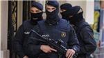 Châu Âu triệt phá tổ chức tội phạm xuyên biên giới tại 17 nước