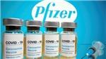 Pfizer dự báo 'bỏ túi' hơn 33 tỷ USD với vaccine phòng Covid-19