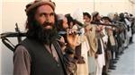 Taliban khẳng định sẵn sàng đàm phán với Chính phủ Afghanistan