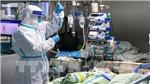 Thanh Hoá cách ly, theo dõi sức khoẻ một nữ bệnh nhân trở về từ Vũ Hán