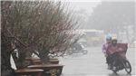 Từ đêm 20/1, Bắc Bộ chuyển mưa, nhiều vùng biển có gió giật nguy hiểm