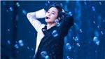 Hết 'Promise', Jimin BTS lại bắt đầu mưa thành tựu với 'Cake Waltz'
