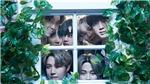 BTS tung chuyện 'thâm cung bí sử' trước khi phát hành album tiếng Nhật thứ 4