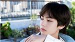 V BTS nằm trong số những thần tượng vật lộn với bệnh tật để theo nghề