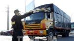 Xử lý nghiêm xe ô tô tải dán mã QR Code 'luồng xanh' giả