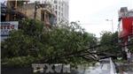 Ảnh hưởng hoàn lưu sau bão số 5, nhiều nơi mưa rất to