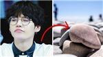 'Thù hằn' gì mà V BTS ước mình có thể biến Suga thành... cục đá