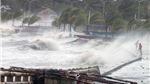 CẬP NHẬT: Huyện đảo Bạch Long Vĩ đã có gió cấp 7