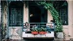 Đêm 16 và ngày 17/10, Hà Nội tiết trời se lạnh đầu Đông, có mưa nhẹ