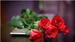 Những lời chúc và món quà ngày 20/10 khiến trái tim phụ nữ 'tan chảy'