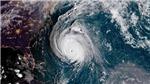 Cập nhật tin mới nhất về áp thấp nhiệt đới trên Biển Đông, không khí lạnh