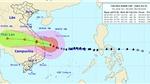 Bão số 9 ở ngay trên vùng biển từ Đà Nẵng đến Phú Yên với gió mạnh giật cấp 16