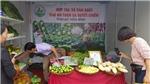 Tuần lễ giới thiệu 'Sản phẩm cây ăn quả có múi và nông, thủy sản an toàn, chất lượng tỉnh Hòa Bình năm 2019 tại Hà Nội'