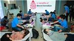 Roche Việt Nam và Samsung Vina đồng hành tổ chức chương trình 'Hiến máu, cứu người'