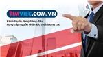 Cv.timviec.com.vn – Cầu nối uy tín giữa ứng viên và nhà tuyển dụng
