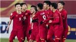 Lịch thi đấu vòng loại World Cup: Việt Nam đấu với Indonesia. Bảng xếp hạng bóng đá