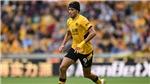 TRỰC TIẾP bóng đá Wolves vs Brentford, Ngoại hạng Anh (18h30, 18/9)
