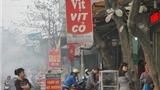 Chuyện Hà Nội: Tản mạn về vịt cỏ Vân Đình