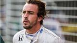 Fernando Alonso: 'May mà tôi còn sống để có mặt ở đây'