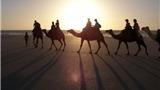 Những điểm du lịch hút triệu khách mỗi năm ở Australia dịp Tết dương lịch