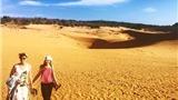 Kinh nghiệm du lịch phượt Mũi Né hữu ích cần biết