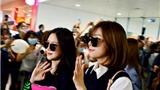 A Pink và Seventeen 'thả tim' khi bị fan bao vây tại Nội Bài