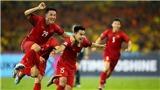 Hoãn vòng loại World Cup đến tháng 6, tuyển Việt Nam cùng Malaysia chạy đua
