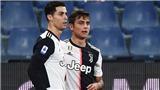 Bóng đá hôm nay 1/3: Van Dijk nổi điên vì thất bại. Ronaldo và Dybala gây bão khi chỉ trích đồng đội