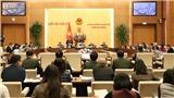 Bộ trưởng Nguyễn Ngọc Thiện: Nghị định về triển lãm sẽ điều chỉnh những bất cập nảy sinh