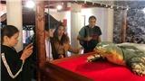 Tiết lộ về 'siêu' tủ kính bảo vệ cụ rùa hồ Gươm tại đền Ngọc Sơn