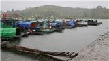 Các tỉnh, thành phố ven biển từ Quảng Ninh đến Khánh Hòa chủ động ứng phó với bão và gió mùa Đông Bắc