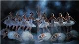 Ballet 'Hồ thiên nga' sẽ trình diễn thế nào trên sân khấu ngoài trời?