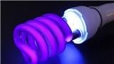 Dịch COVID-19: Đèn cực tím là 'vũ khí' tiêu diệt virus