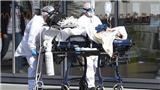 Dịch COVID-19: Pháp ghi nhận gần 90 ca tử vong mới trong 24 giờ