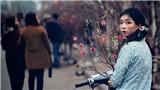 Yêu Hà Nội theo kiểu... Nguyễn Việt Thanh