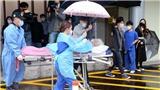 Hàn Quốc: Các ổ dịch COVID-19 ở Seoul vẫn tiềm ẩn nhiều nguy cơ