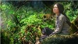 Phim 'Truyền thuyết về Quán Tiên': Một cái nhìn mới về chiến tranh