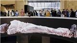 Sảnh trưng bày xác ướp hoàng gia nghìn năm tuổi ở Ai Cập mở cửa đón khách