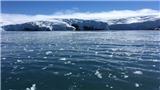 Tan băng ở Nam Cực có thể đẩy mực nước biển dâng cao ở mức thảm họa