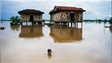Nhiếp ảnh gia Lâm Đức Hiền: 'Hình ảnh của sông Mekong, chính là khuôn mặt của bà'