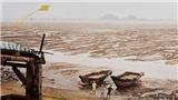 Xem 'câu chuyện dòng sông' của hơn 20 họa sĩ