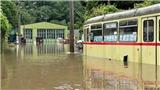 Lũ lụt đang tàn phá văn hóa Đức ra sao?