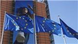 EU nới quy định cấp Thẻ Xanh nhằm thu hút lao động