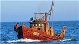 Nhật Bản cứu hơn 10 thủy thủ tàu cá của Triều Tiên