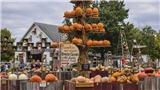 VIDEO: Ghé thăm trang trại bí ngô nổi tiếng của Mỹ nhân dịp Halloween
