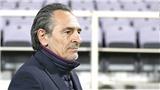 Prandelli từ chức ở Fiorentina: Căn bệnh khó nói của các HLV