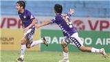 Thái Quý, 'gà son' mới của Hà Nội FC