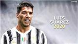 Kiếm tìm một 'số 9' lý tưởng cho Juve