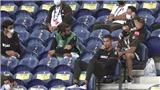 Trực tiếp bóng đá Thụy Điển vs Bồ Đào Nha: Không CR7, Bồ vẫn sống tốt